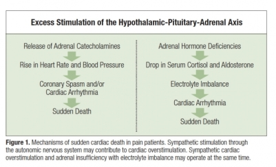 mechanisms of sudden cardiac death in pain patients